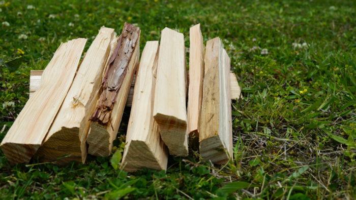 針葉樹の特徴フェザーステック