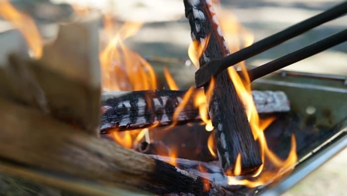 火バサミ テオゴニア