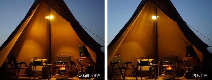 テント たねほおずき 明るさ