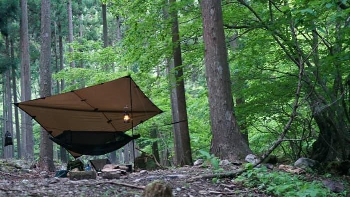 ハンモックキャンプ準備